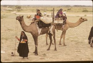 rabari nomads on the move - 1997