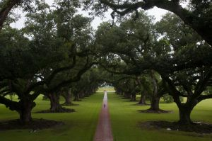 oak alley plantation - louisiana 2010