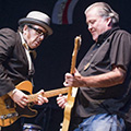 Elvis Costello and David Hidalgo - SEVA benefit